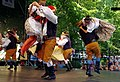 18.8.17 Pisek MFF Friday Evening Czech Groups 10811 (35874046133).jpg
