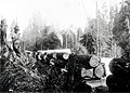 1919. Entomological Ranger W.E. Glendinning observes spruce logs on a logging train. Oregon Coast Range. (33299812350).jpg