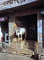1996 -217-25 Jaisalmer (2234179492).jpg