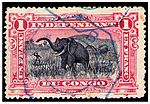 1F Stamp of Belgian Congo used Boma c. 1900.jpg