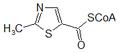 2-metil-tiazolcarbonil CoA.png