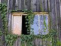 2007-04-06 10-20-50 Switzerland Schaffhausen Dörflingen, Hinterdorf.jpg