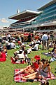 2007 Melbourne Cup (04).JPG
