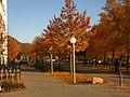 2011-10-31-160044 .JPG - panoramio.jpg