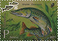 2011. Stamp of Belarus 24-2011-28-07-z2.jpg