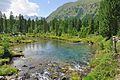 2013-08-06 12-28-58 Switzerland Kanton Graubünden Poschiavo Val di Campo.jpg