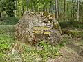 2014 Pfälzerwald 077 Ritterstein 238 Lolosruhe.JPG