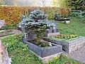 2017-10-18 (408) Friedhof Plankenstein.jpg