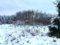 2017-12-09 Hike Ratingen and surroundings. Reader-41.png