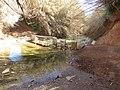 2018-02-22 River Quarteira, Várzea de Quarteira (1).JPG