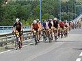 2018-07-15 (308) Wachauer Radtage at Donaubrücke Melk.jpg