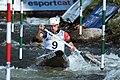 2019 ICF Canoe slalom World Championships 131 - Denis Gargaud Chanut.jpg