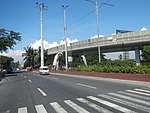 2334Elpidio Quirino Avenue NAIA Road 21.jpg