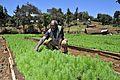 2DU Kenya117 (5367317878).jpg