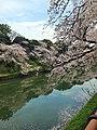 2 Chome Kudanminami, Chiyoda-ku, Tōkyō-to 102-0074, Japan - panoramio (1).jpg