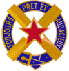 303rd Cavalry Regiment USAR DUI.png