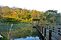 308, Taiwan, 新竹縣寶山鄉油田村 - panoramio (15).jpg
