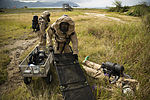3rd MarDiv CBRN platoon conducts exercise 140513-M-DP650-007.jpg