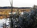 54 Bennetts Point RD Green Pond SC 6882 (12397925065).jpg