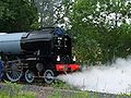 60163 Tornado in steam 3.jpg
