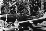 72nd Tactical Recon Group P-39.jpg