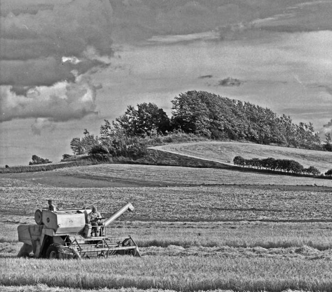 farmerdating Samsø