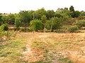 8921 Omarchevo, Bulgaria - panoramio (11).jpg