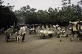ASC Leiden - van Achterberg Collection - 03 - 33 - Un marché au bord du fleuve Niger. Au moins cinq chariots à âne plats à deux roues - Ségou, Mali - novembre-décembre 1993.tif
