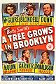 A Tree Grows in Brooklyn (1945 poster).jpg