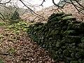 A boundary wall Bamford Moor - geograph.org.uk - 708883.jpg