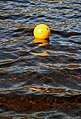 A buoy on St Mary's Loch - geograph.org.uk - 1491444.jpg