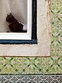 A framed cat (1284804145).jpg