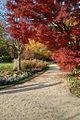 A sunny day in autumn (6833722200).jpg