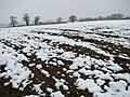 A wintry Easter Sunday - geograph.org.uk - 734579.jpg