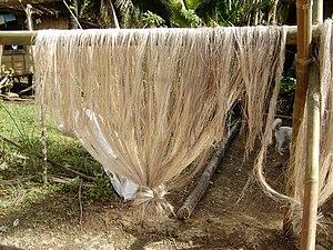 Abacáfasern in Indonesien