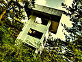Abandoned Tower among Trees.jpg