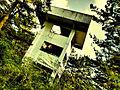Abandoned Tower among Trees.jpg