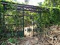 Acharya Jagadish Chandra Bose Indian Botanic Garden - Howrah 2011-03-20 2058.JPG