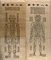 Acupuncture charts Wellcome V0018656.jpg