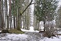 Aderkašu kapi, Taurupes pagasts, Ogres novads, Latvia - panoramio (1).jpg
