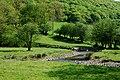 Afon Cothi at Aber Branddu - geograph.org.uk - 800179.jpg