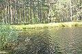 Aklais ezers, Vecumnieku pagasts, Vecumnieku novads, Latvia - panoramio.jpg