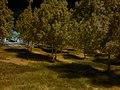 AlainJablul Khapit UAE 96 - panoramio.jpg