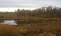 Albri järv sügüse.png