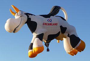 Albuquerque Balloon Fiesta 2011 - Creamland Cow balloon.JPG