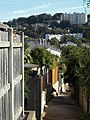 Alley, Torquay - geograph.org.uk - 1006531.jpg