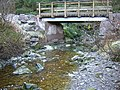 Allt Clachanlaoigh Passes Under Forest Track - geograph.org.uk - 126993.jpg