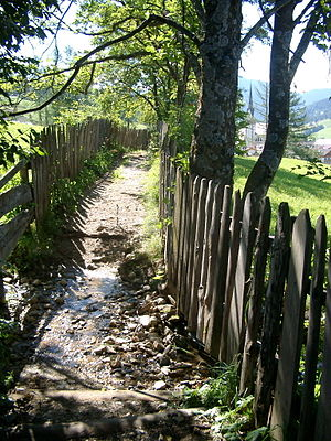 Badia, South Tyrol - Old path above San Linêrt in Badia