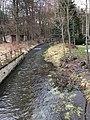 Altmannsgrün 06.jpg
