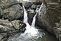 Amirthi falls zoological park.jpg